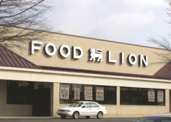 Tower Shopping Center: Food Lion
